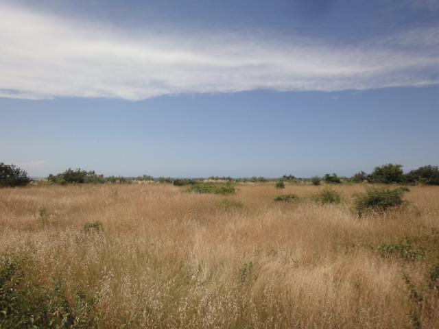 Land plot, Istria, Pula, 3000 sq.m, 300 000 €
