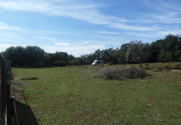 Large land plot in Stinjan for sale