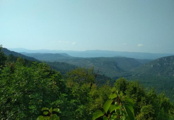 Fantastic land plot for sale in Motovun area with stunning views of Istria