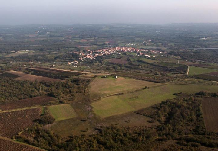 Outstanding land offer in Brtonigla with building and agricultural parts, 8.5 hectares in total