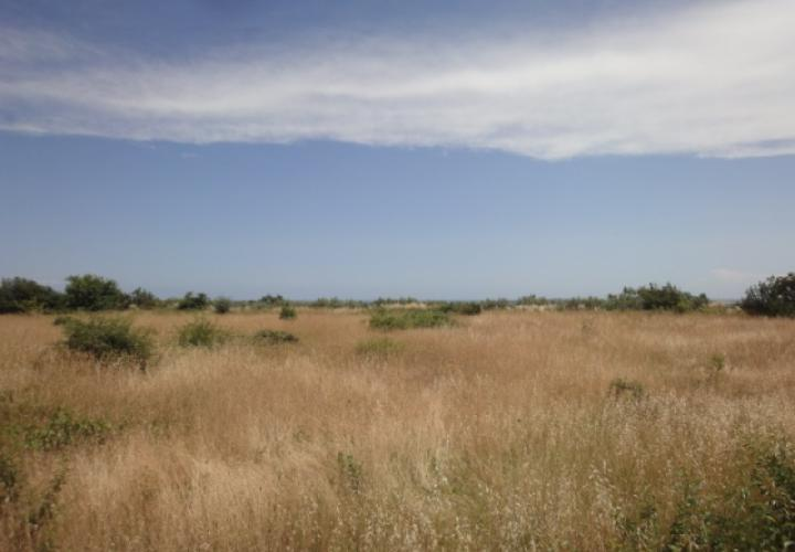 Land plot, Istria, Pula, 3000 sq.m, 300 000 €