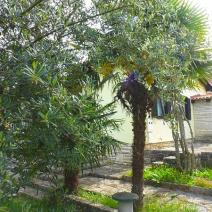 House for sale 200 meters from the sea in Umag area, Istria - pic 3