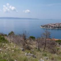 Land plot, North and Middle Dalmatia, Trogir, Ciovo, 15000 sq.m, 114 000 € - pic 3