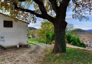 House on a big land plot of 2108m2, Motovun