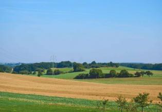 Large agricultural land in Krnica, Marčana, 58.811m2